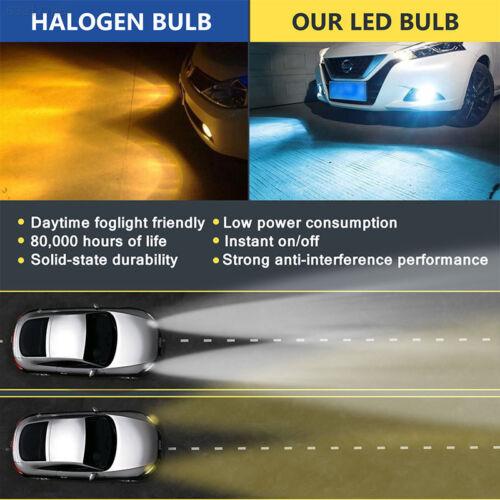 C81E H11//H8//H9 Xenon Light Fog Light HID Xenon Headlight 7.5 W Car Accessories