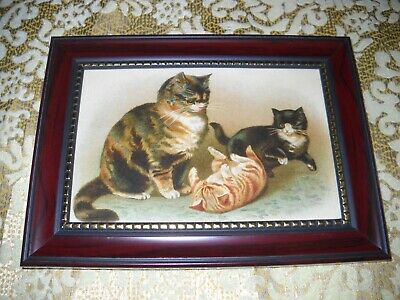Kittens Happy With Mother Cat 4 X 6 Brown Framed Picture Victorian Style Print Ebay