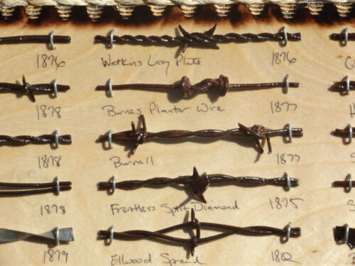 Antique Barbed Wire Display 27 cut/'s Authentic Barbwire Collection