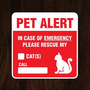 Image is loading Pet-Alert-Cat-Sticker-Decal-034-IN-CASE-