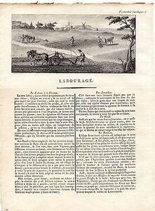 GRAVURE XVIIIe - LE LABOURAGE 7FCxuVcP-07203443-276258230