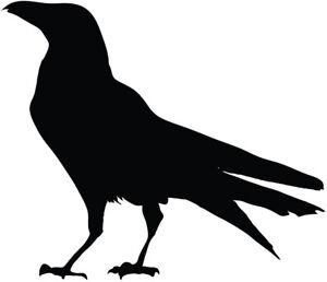 Black bird silhouette vinyl decal sticker raven crow birds ebay - Dessin corbeau facile ...