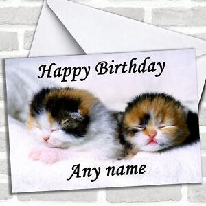 Adorable-Sleeping-Kittens-Birthday-Customised-Card