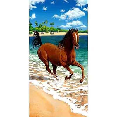 Horse running on beach refrigerator magnet
