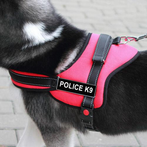 Nylon Working Service Sports Training Dog Harness Heavy Duty Pitbull Husky Boxer