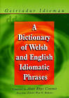 A Dictionary of Welsh and English Idiomatic Phrases: Welsh-English/English-Welsh by Alun Cownie (Paperback, 2000)