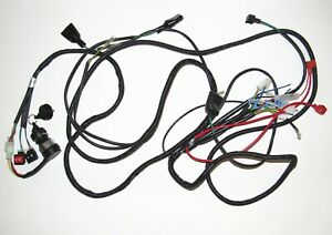 Details about Wire harness for 150CC GO KART CARTER Talon KINROAD EXPLORER on