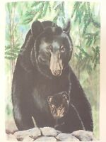 Big Black Bear & Cub In Woods / Mountains Of Evergreen Pine Trees Garden Flag