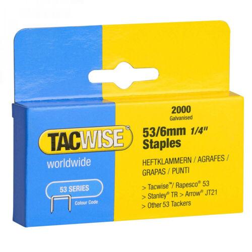 Tacwise Agrafes de Type 53 6 mm Galvanisées Boîte 2 000