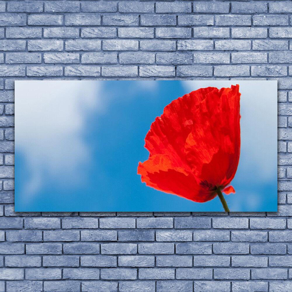 Glasbilder Wandbild Druck auf Glas 140x70 Tulpe Pflanzen