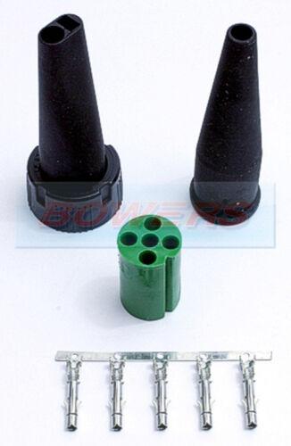 Aspock Verde Luz Trasera De 5 Pines Conector Plug Ifor Williams Brian James remolques