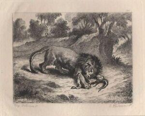 Eugene-Delacroix-Lion-devorant-un-caiman-Eau-Forte-Hedouin-XIXe