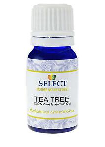 Tea-Tree-Essential-Oil-Pure-Maleleuca-Alternifolia-10ml-Aromatherapy