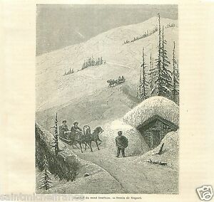 Troika-Mount-Surham-Mont-Sourham-Norway-Norvege-GRAVURE-ANTIQUE-OLD-PRINT-1860