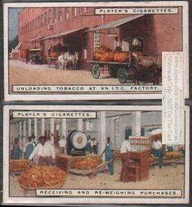 Tobacco-Warehouse-Receiving-and-Weighing-Tobacco-Leaf-TWO-90-Y-O-Trade-Ad-Cards