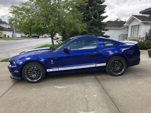 2014 Shelby GT500 Mustang