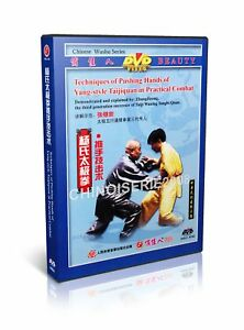 Yang-Style-Taichi-Taijiquan-Pushing-Hands-in-Practicl-Combat-by-Li-Derun-DVD