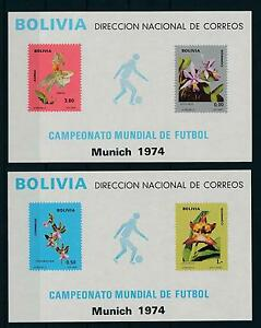 [17137] Bolivia 1974 Orchids World Cup Football Soccer MNH 2 S/S VF