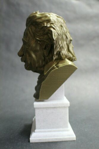 Albert Einstein 3D Printed Bust Famous Physicist Art FREE SHIPPING