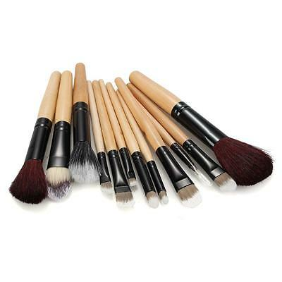 Set 12 Pro Animal Wool Cosmetic Eyeshadow Brushes Beauty Tool with Case