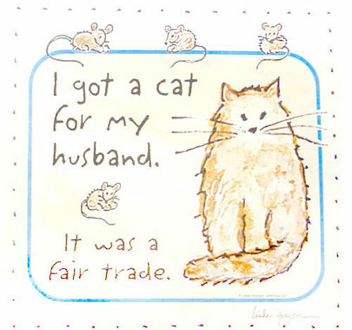 SUPERSIZE T595F Rhinestone Got a Cat For My Husband Funny T-Shirt PLUS SIZE or