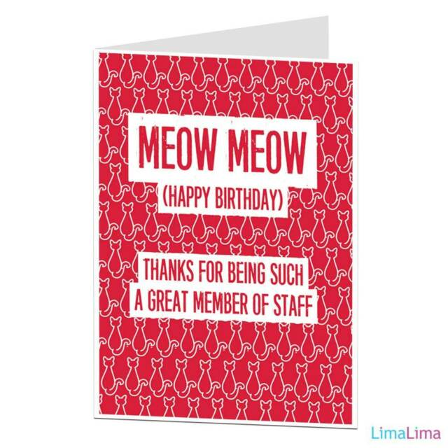 Happy Birthday Card From The Cat Lover Crazy Lady Pet Theme Funny Ebay