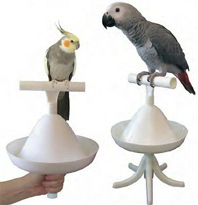 Hand And Table Top Perch Can Be Repeatedly Remolded. The Percher! Obliging Caitec