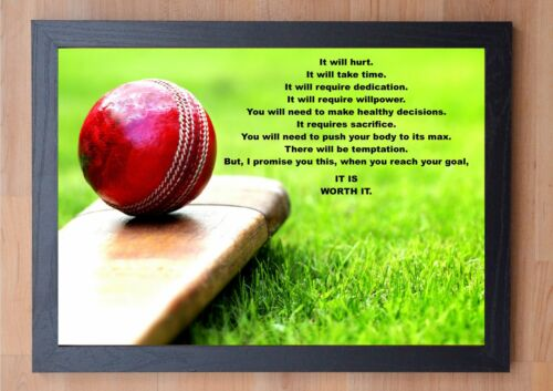 PRINT POSTER IT WILL HURT... STUNNING FRAMED CRICKET INSPIRATIONAL QUOTE