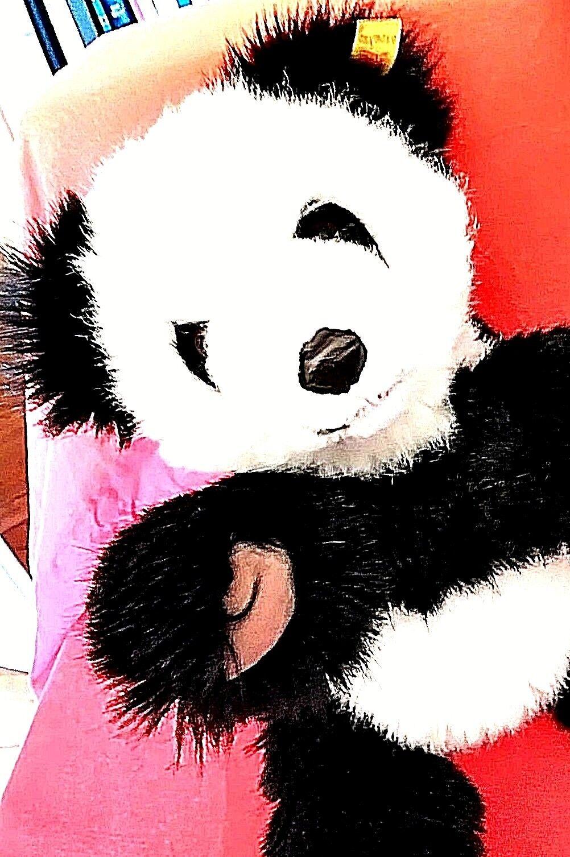 Steiff 0326 32 - Teddybär Teddybär Teddybär Pandabär Molly 32 cm schwarz weiß wie NEU sehr süß + k c1ddda
