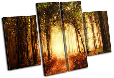 Forest Road Landscapes MULTI CANVAS WALL ART Picture Print VA