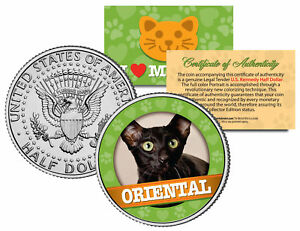 ORIENTAL-Cat-JFK-Kennedy-Half-Dollar-US-Colorized-Coin