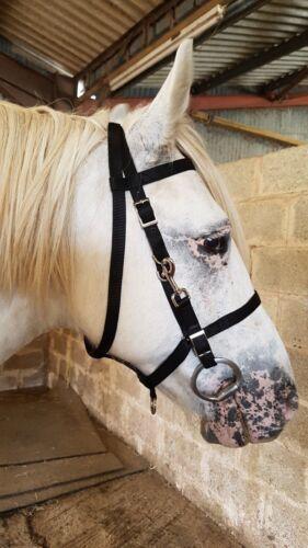 WEB COMBINATION ENDURANCE BRIDLE converts to headcollar webbing pony cob full