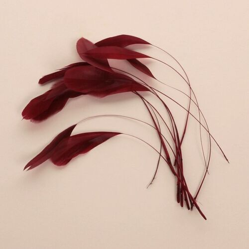 Diamond Feather craft feathers x 12 Claret Burgundy