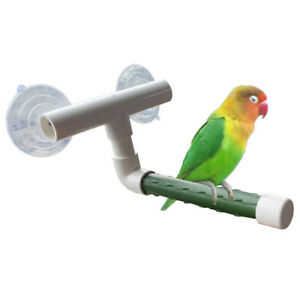 UK-BIRDS-PARROT-BUDGIE-SHOWER-STAND-PERCH-WINDOW-WALL-SUCTION-CUP-PAW-GRINDING