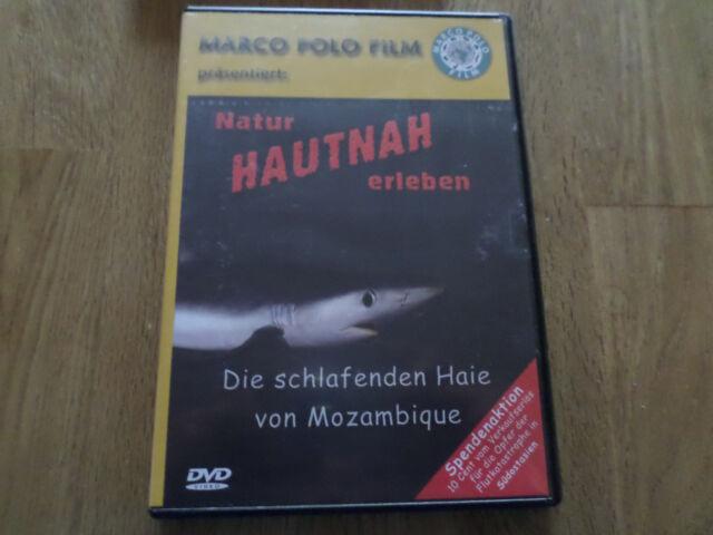 Die schlafenden Haie von Mozambique    DVD