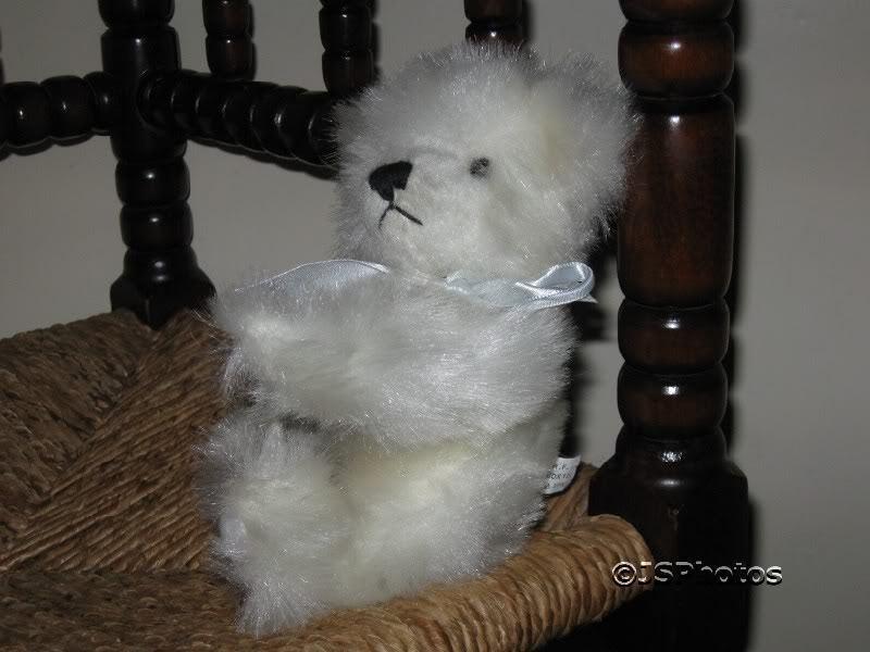 I.C.R.F. bianca Long Plush Jointed Teddy Bear