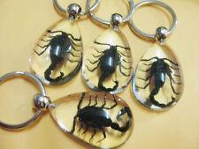 12 pcs Vogue Black Scorpion Specimen Pink Drop Pendant