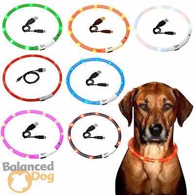 Pflichtbewusst Led Leuchthalsband Visio Light Signalleuchte Usb Karlie Halsband Für Hunde Blink