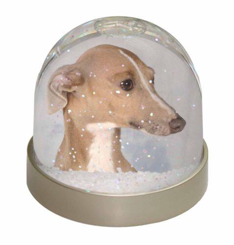 Greyhound Dog Photo Snow Globe Waterball Stocking Filler Gift AD-GH4GL