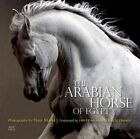 The Arabian Horse of Egypt by Cynthia Culbertson (Paperback, 2014)