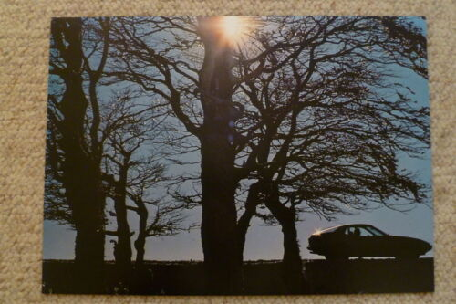Awesome L@@K 1979 Porsche 924 Coupe Showroom Advertising Sales Poster RARE!