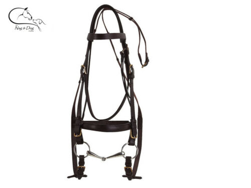 Ekkia Leather Padded Bridle FREE Reins Black// Brown Draught Clydesdale Shire