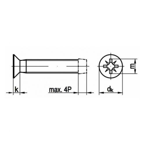 10x DIN 7500 Gewindefurchende Schrauben 3 x 10mm Kreuzschlitz Pozidrive Stahl g