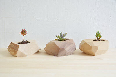 Candle Holder Wood Round Planter Succulent plant Holder F//S Wall Planters