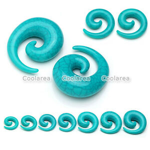 2x-Acrylic-Spiral-Snail-Taper-Ear-Flesh-Tunnel-Plugs-Stretching-Expander-Earring