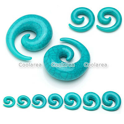 2x Acrylic Spiral Snail Taper Ear Flesh Tunnel Plugs Stretching Expander Earring