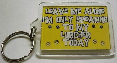 New Novelty Dog Keyring Gift Leave Me Alone I/'m Only Talking To My Dog Today