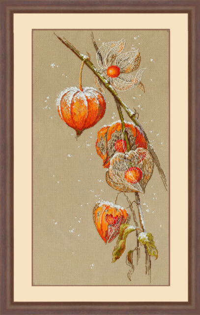 Buy Physalis Counted Cross Stitch Kit Flowers Embroidery Needlework