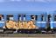 MTN-LIMITED-EDITION-Cekios-WTCS-400ML-SPRAY-PAINT-Montana-Colors thumbnail 8