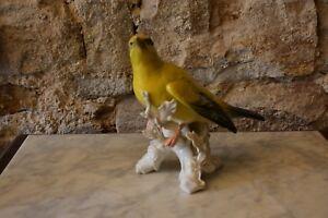 sehr-grosse-ENS-Porzellan-Figur-Vogel-in-Top-Zustand